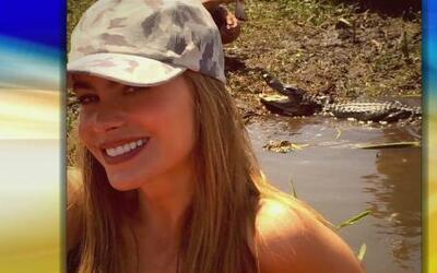 Sofía Vergara, solterita y sin compromiso