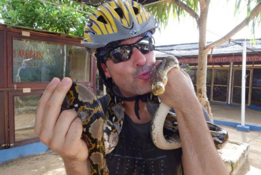Por si las dudas, esta serpiente tenía la boca amarrada para que no fuer...