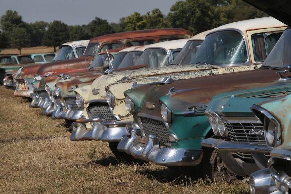Los coches clásicos se alinean para ser subastados en un campo en...