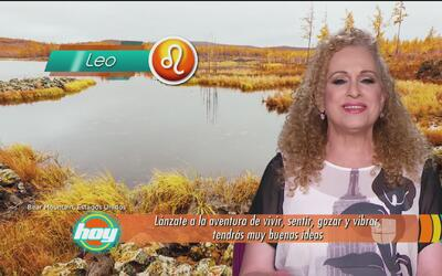 Mizada Leo 16 de enero de 2017