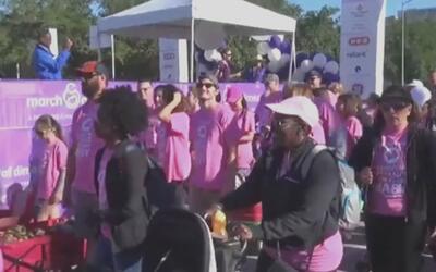 Cientos de personas marcharon en Houston por esta buena causa