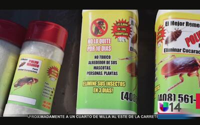 Alertan sobre remedio para matar cucarachas