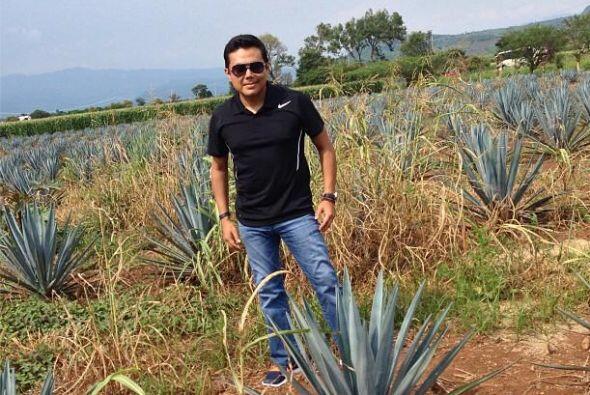 El crecimiento de esta planta para producir tequila tarde entre 5 y 8 a&...