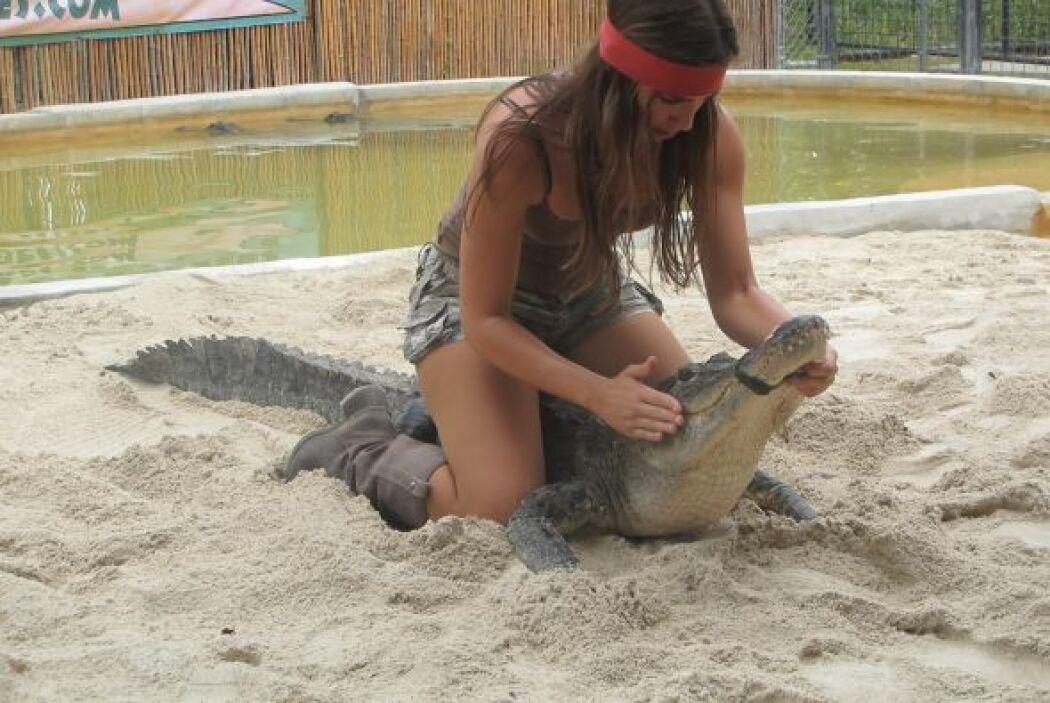 Entre besos y apapachos, Heloisa pudo conquistar este cocodrilo.