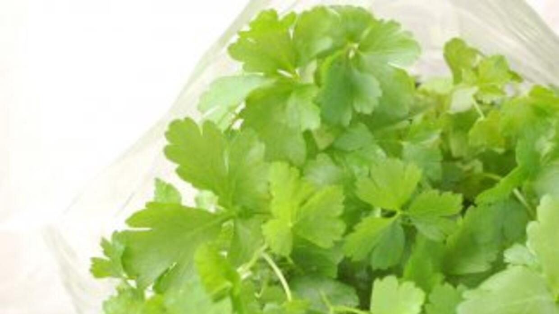 El cilantro es perfecto para las comidas saladas.