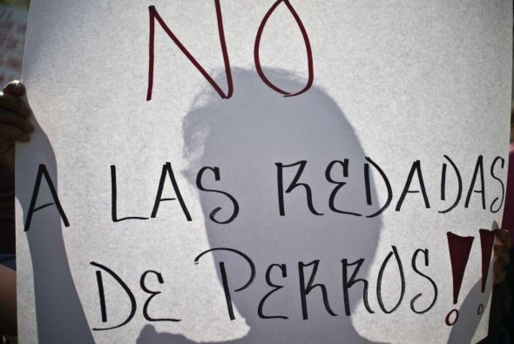 """Como dice un popular refrán mexicano, recordó el sociólogo, """"la mula no..."""