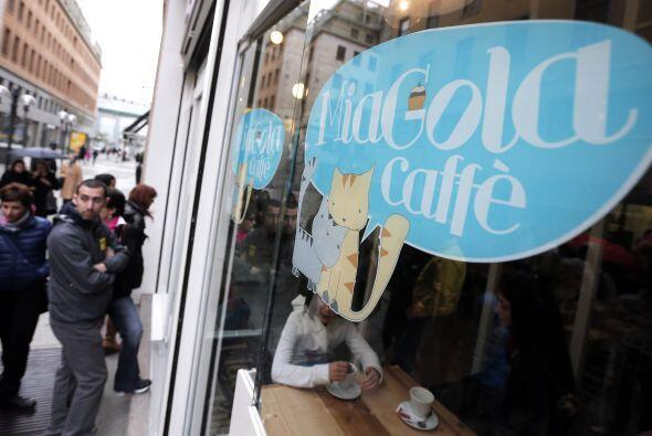 Lo último en cafeterías es MiaGola Café, un concepto completamente innov...