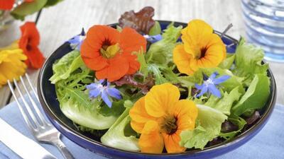 Las flores comestibles son ideales para renovar el menú esta temporada....