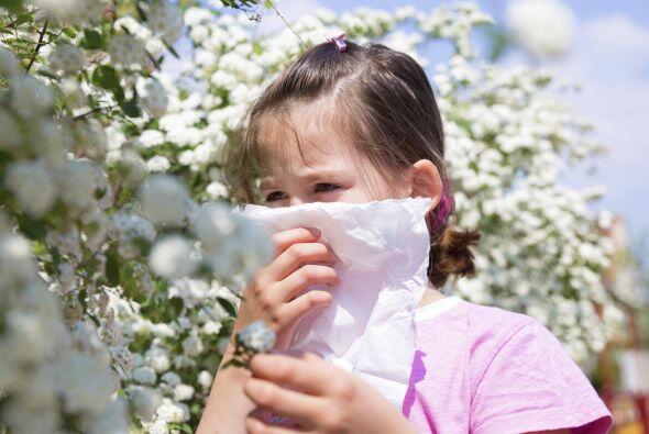 Evita las actividades al aire libre, sobre todo en los días de mucho cal...