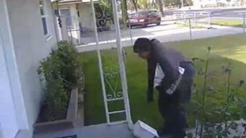 Imagen del video quecaptó al ladrón que se llevó una caja con excremento...