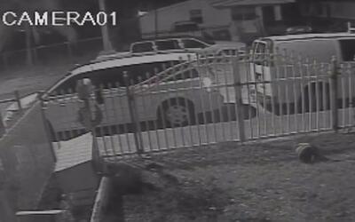 Policía de Miami busca a dos sospechosos de asaltar a una joven en el No...