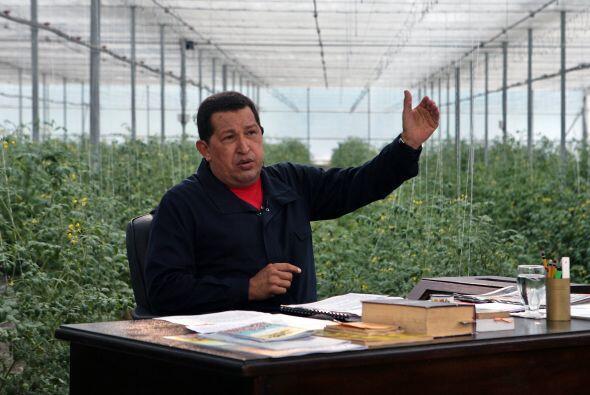 Durante la emisión de su programa 'Aló, presidente', Chávez explicó que...