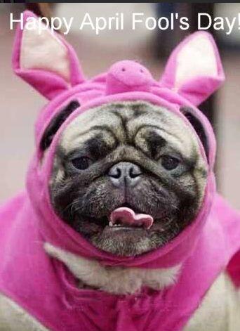¡Happy April Fools' Day!