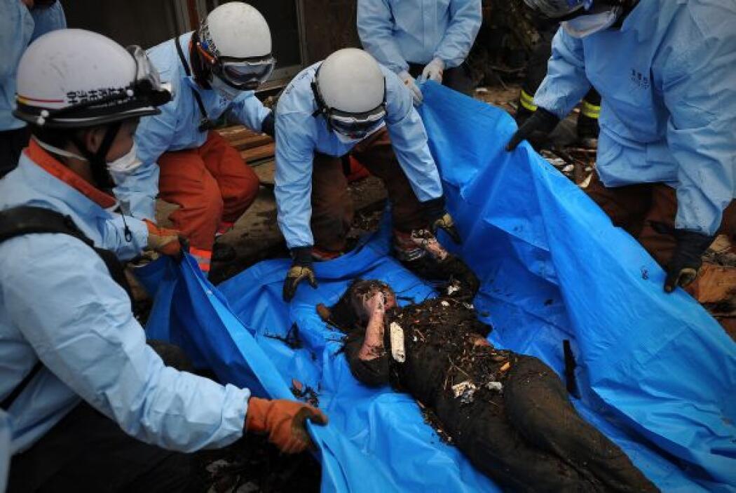 Mientras tanto, en el estadio de Rifu, transformado en una morgue, los j...