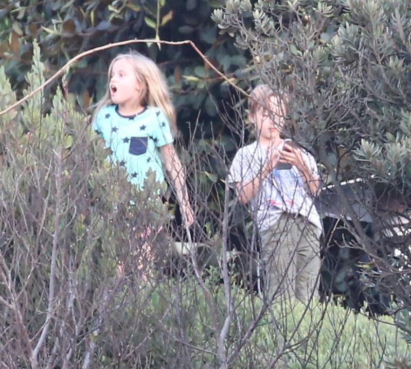 Hijos de Brady Angelina