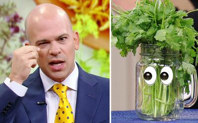 El Dr. Rivera comprobó que el agua de cilantro es un Santo Remedio para...