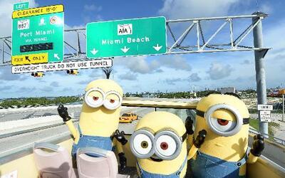 ¡Los Minions invadieron Miami!