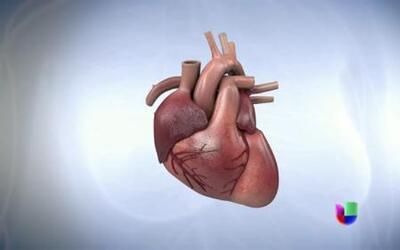 Dieta y ejercicios para prevenir enfermedades cardíacas