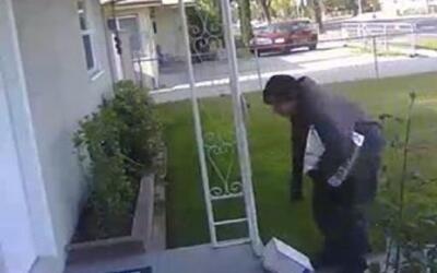 Imagen del video quecaptó al ladrón que se llevó un...