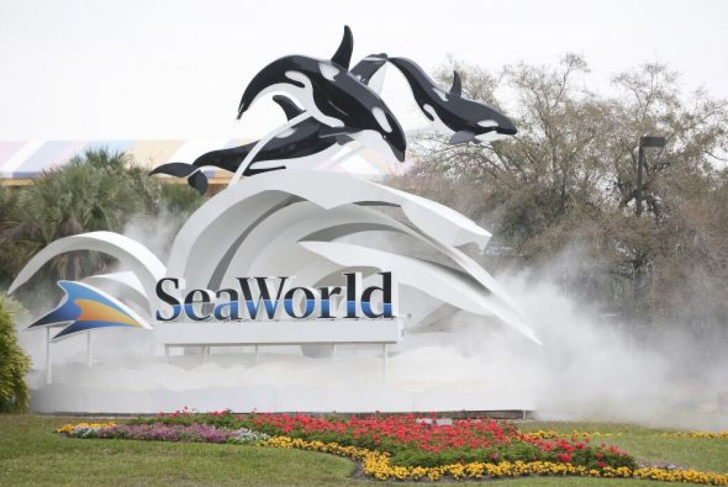 Funcionarios de Sea World han invertido millones de dólares para hacer m...