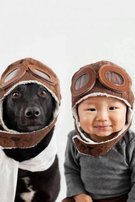 Alegría, voluntario de Animal Rescue Team logró encontrar padres adoptiv...