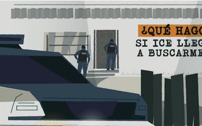 Animaciones para conocer qué hacer hacer si los agentes de ICE llegan a...