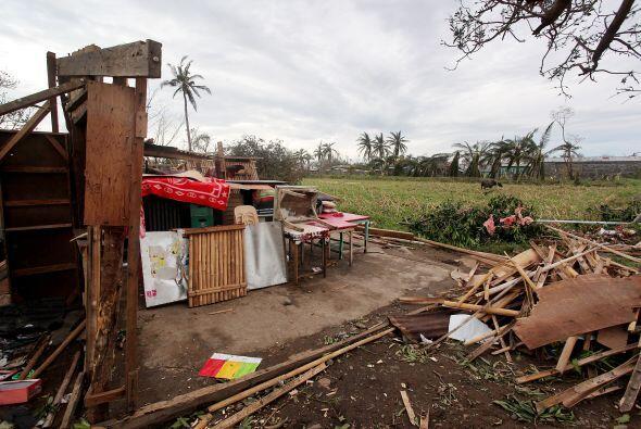 Numerosos arrozales y maizales fueron destruidos, justo antes de la cose...