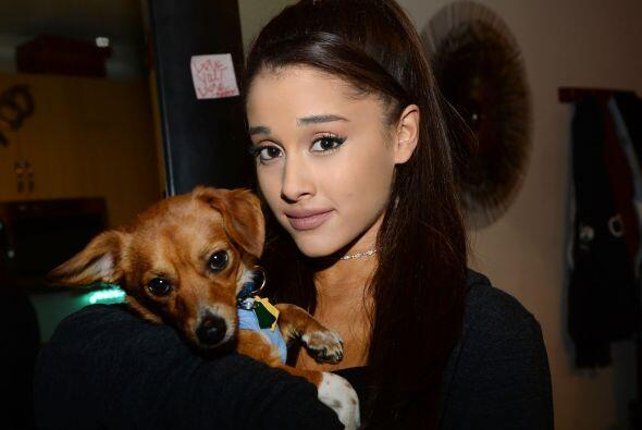 Ella patrocinará la adopción de 15 pequeños cachorros.