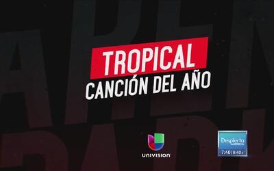 Conoce a los nominados a Canción del Año Tropical en Premio Lo Nuestro 2017