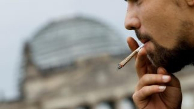 La marihuana es una de las drogas que más consumen los latinos en EU.