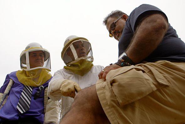 También durante la visita a la granja de abejas de Scott Tenney,...