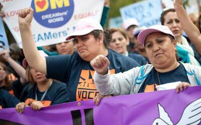 Arrestan a manifestantes inmigrantes en Washington