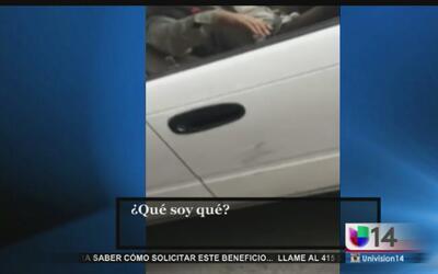 Mujer capta en video el momento en el que un chofer del transporte públi...