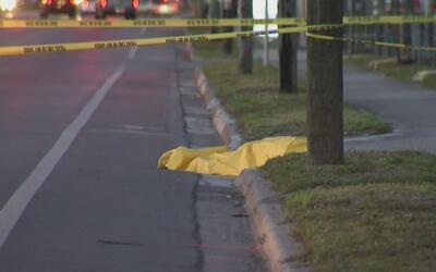 Encuentran el cuerpo de una persona cerca de una parada de autobuses en...