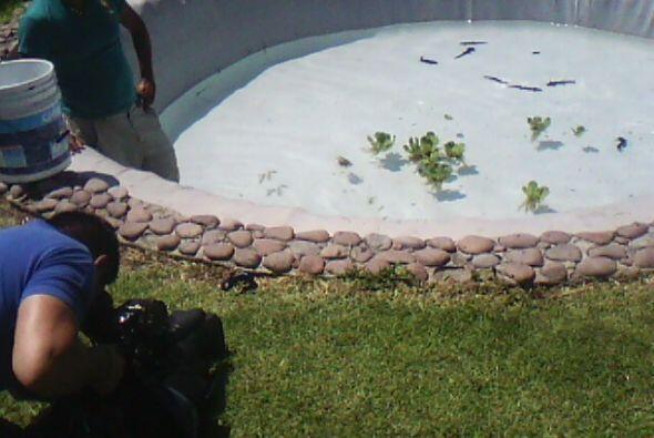 Acompaña a Pilar Preza durante su visita a Xochimilco, Méx...