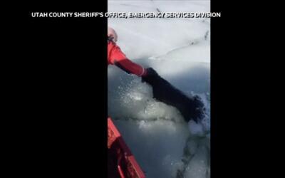 Un perro es rescatado en un lago congelado de Utah