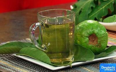 Los beneficios de las hojas en frutas y verduras