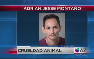 Arrestan a sujeto por cargos de maltrato animal