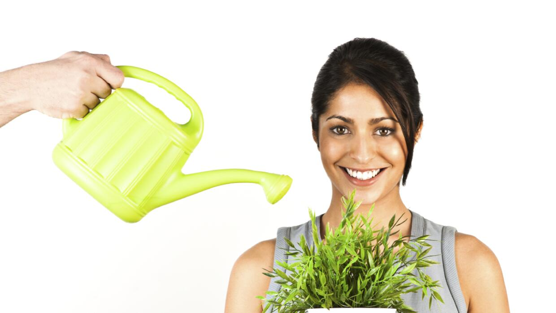 Te contamos el 'ABC' del riego para que tus plantas luzcan espectaculares.