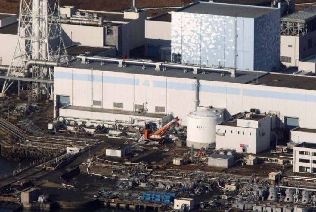 Expertos de la compañía francesa EDF, de la firma nuclear Areva y del Co...
