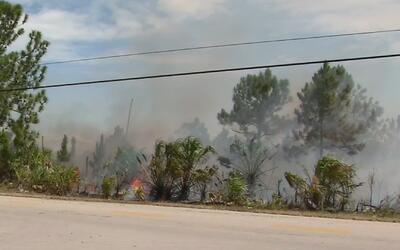 Más de 70 acres fueron consumidas por un voraz incendio en el suroeste d...