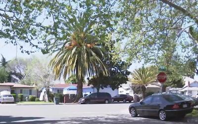 'Área de la Bahía en un Minuto': la policía de East Palo Alto arrestó a...