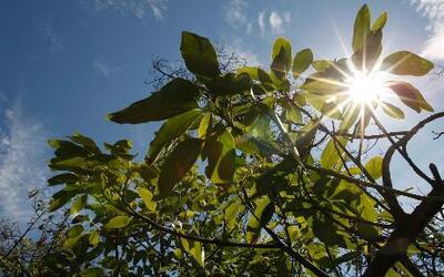 Jackie Guerrido anunció sorpresas del clima