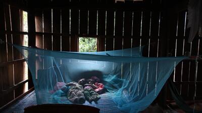 A pesar de los avances, la malaria continúa siendo un problema de salud...