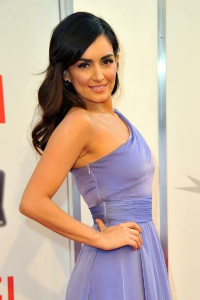 Otra hermosa actriz mexicana es Ana de la Reguera.