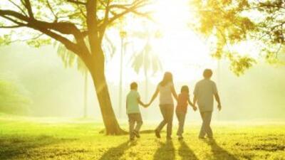 Vivir en un lugar más saludable también depende de ti: aprende qué puede...