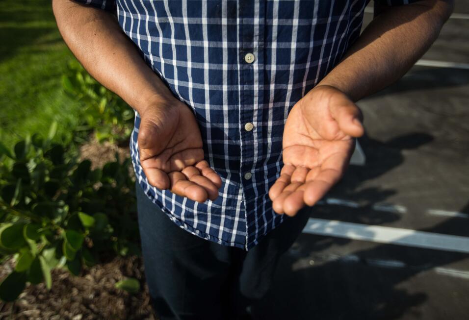 Samuel, 39, de México, planta frijoles, tomates y legumbres en Florida d...