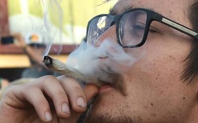 Niegan amparo para el uso recreativo de la marihuana en México