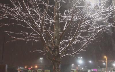 Condado de Cobb se prepara para evitar percances durante la tormenta inv...