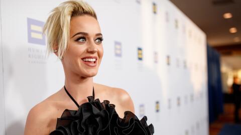 Katy Perry fue reconocida con el 'Premio a la Igualdad Nacional'